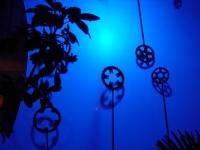 Cadres de lumière 1