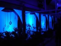 Cadres de lumière 3